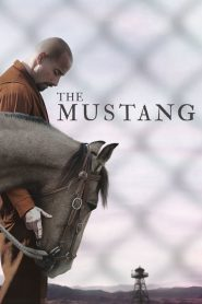 Mustang: La rehabilitación 2019