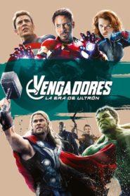 Avengers: Era de Ultrón 2015