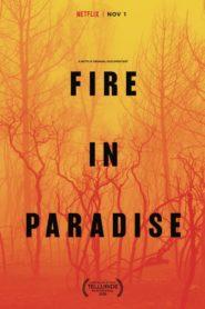 Fire in Paradise (Paradise en llamas) (2019)