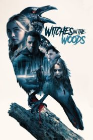 La noche de la bruja – Witches in the Woods 2019