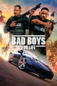 Dos policías rebeldes 3 / Bad Boys for Life 2020