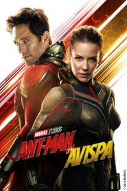 Ant-Man 2: El Hombre Hormiga y la Avispa 2018
