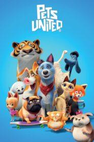 Mascotas unidas 2019