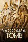 Los secretos de la tumba de Saqqara 2020
