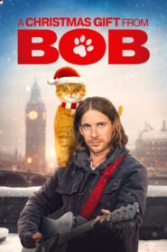 A Christmas Gift from Bob 2020