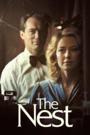 The Nest 2020