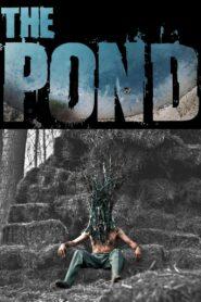 The Pond 2021