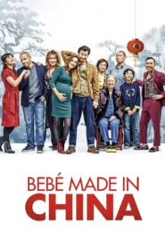 Made in China 2019