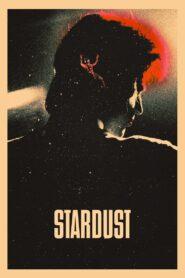 Stardust 2020